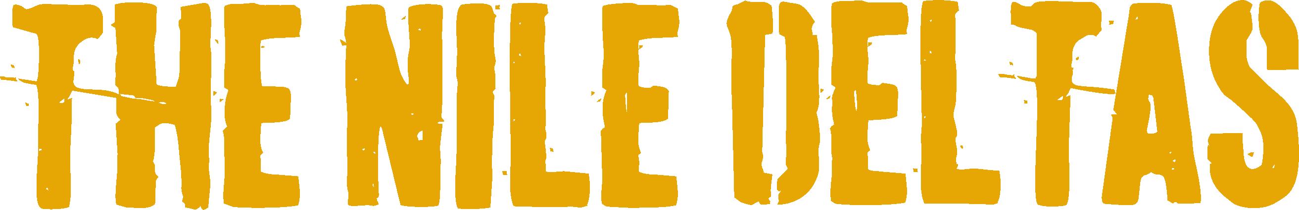The Nile Deltas logo